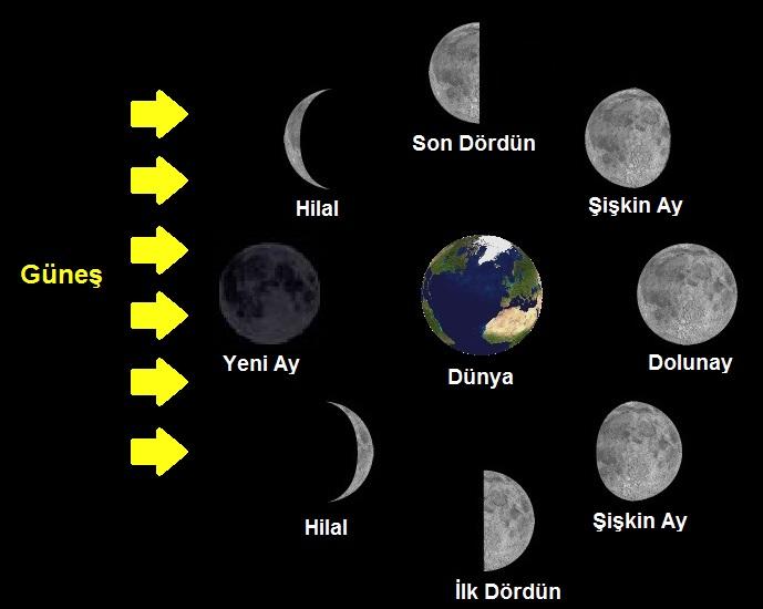 Ayın Evreleri Nelerdir?