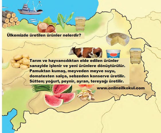 Ülkemizde üretilen ürünler nelerdir?