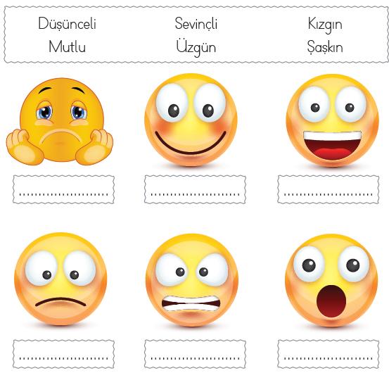 Emojilerin anlamları nelerdir?