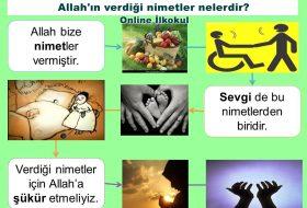 Allah'ın Bize Verdikleri (Nimetlere Şükretmek)