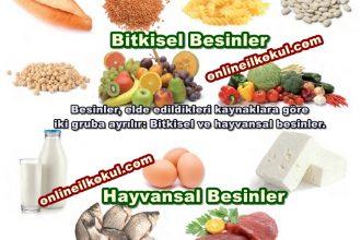 Sağlıklı olmak için hangi besinleri tüketmeliyiz?