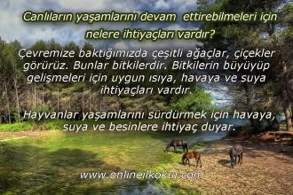 Canlıların yaşamlarını devam ettirebilmeleri için nelere ihtiyaçları vardır?