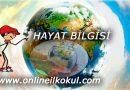 3. sınıf Hayat bilgisi dersi ile ilgili online testler ve sınavlar