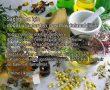 Doğal ürünler ile ilgili konular
