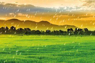 Yağmurun faydaları nelerdir?