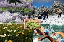 Türkiye'de Görülen İklim Tipleri ve Özellikleri Nelerdir?