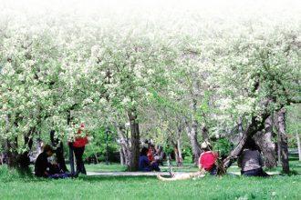 İlkbahar mevsiminin özellikleri nelerdir?