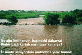 Sakarya Türküsü şiiri