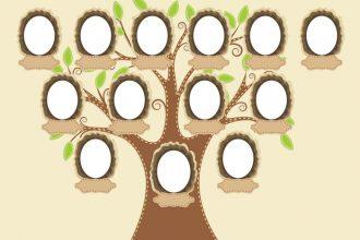 Soy Ağacı veya Aile Ağacı