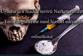 Uyuşturucu madde terörü Narkoterörizmin Terör örgütlerine hizmeti